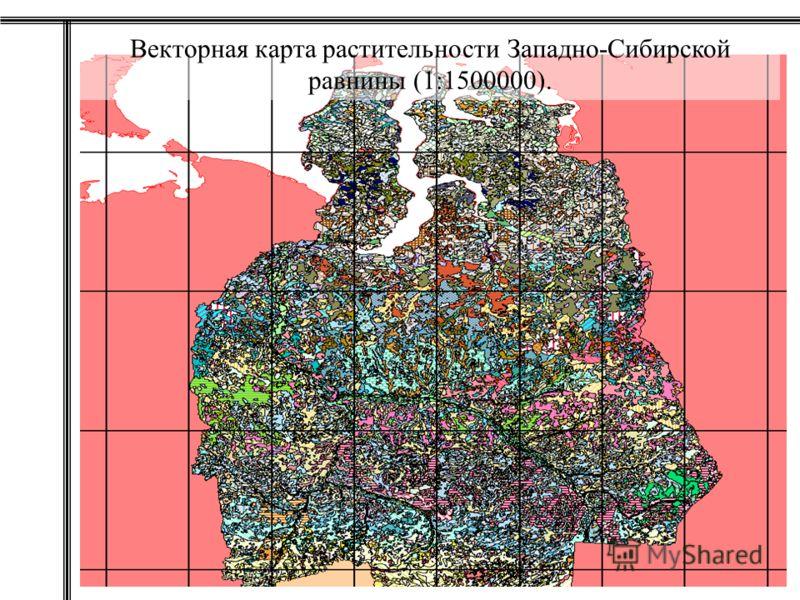 Векторная карта растительности Западно-Сибирской равнины (1:1500000).
