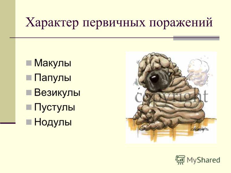 Характер первичных поражений Макулы Папулы Везикулы Пустулы Нодулы
