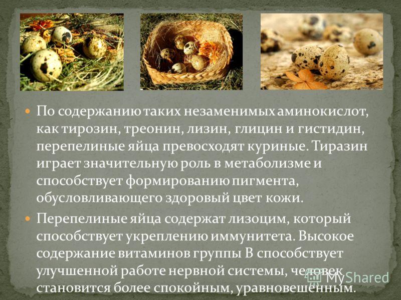 По содержанию таких незаменимых аминокислот, как тирозин, треонин, лизин, глицин и гистидин, перепелиные яйца превосходят куриные. Тиразин играет значительную роль в метаболизме и способствует формированию пигмента, обусловливающего здоровый цвет кож