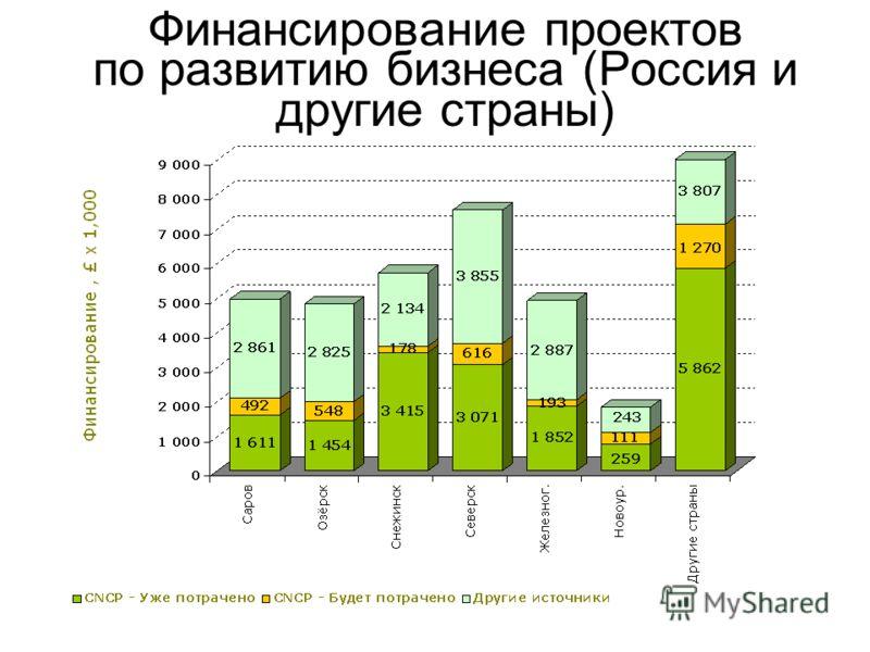 Финансирование проектов по развитию бизнеса (Россия и другие страны)