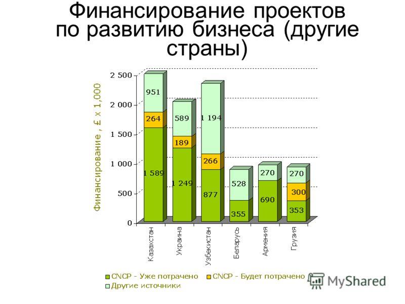 Финансирование проектов по развитию бизнеса (другие страны)