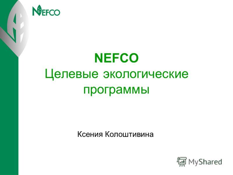 NEFCO Целевые экологические программы Ксения Колоштивина
