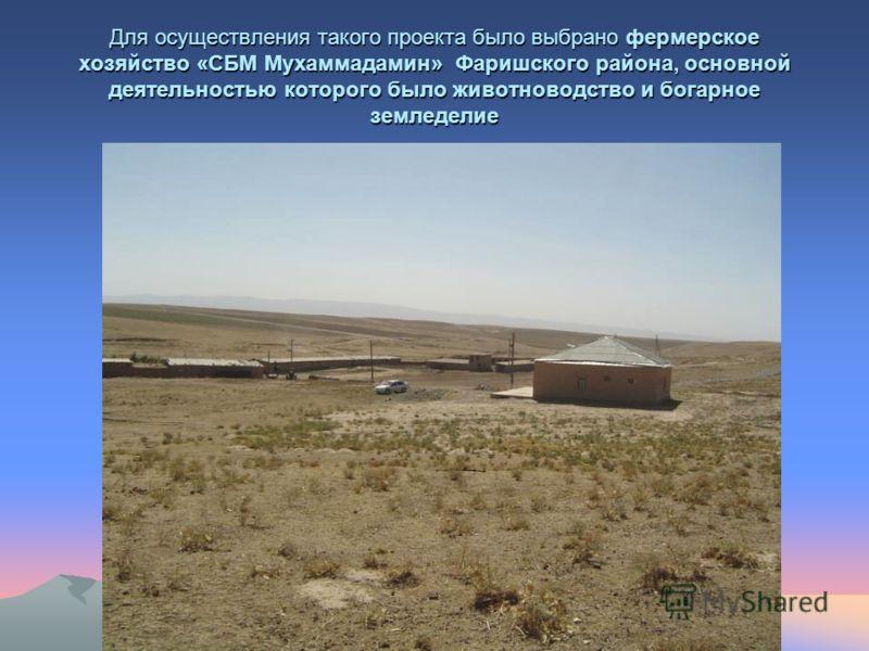 Для осуществления такого проекта было выбрано фермерское хозяйство «СБМ Мухаммадамин» Фаришского района, основной деятельностью которого было животноводство и богарное земледелие