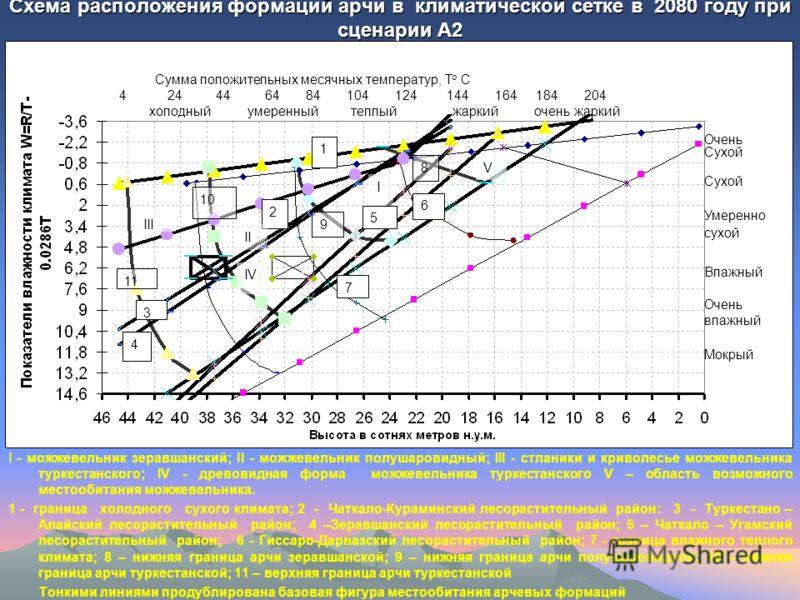 Схема расположения формаций арчи в климатической сетке в 2080 году при сценарии А2 I - можжевельник зеравшанский; II - можжевельник полушаровидный; III - стланики и криволесье можжевельника туркестанского; IV - древовидная форма можжевельника туркест