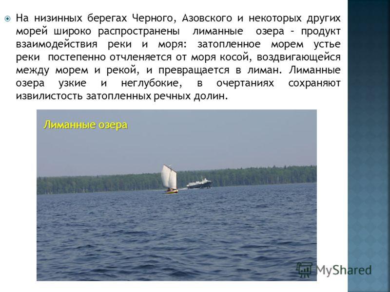 На низинных берегах Черного, Азовского и некоторых других морей широко распространены лиманные озера – продукт взаимодействия реки и моря: затопленное морем устье реки постепенно отчленяется от моря косой, воздвигающейся между морем и рекой, и превра