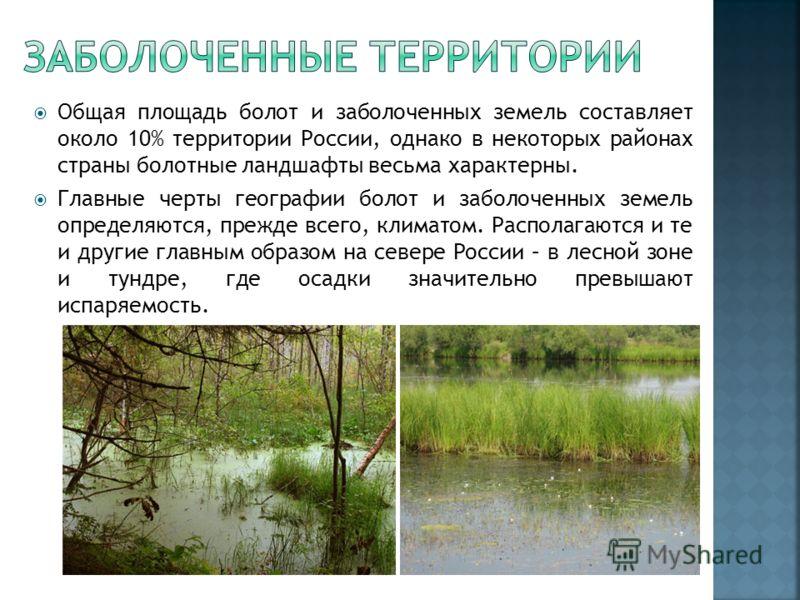 Общая площадь болот и заболоченных земель составляет около 10% территории России, однако в некоторых районах страны болотные ландшафты весьма характерны. Главные черты географии болот и заболоченных земель определяются, прежде всего, климатом. Распол