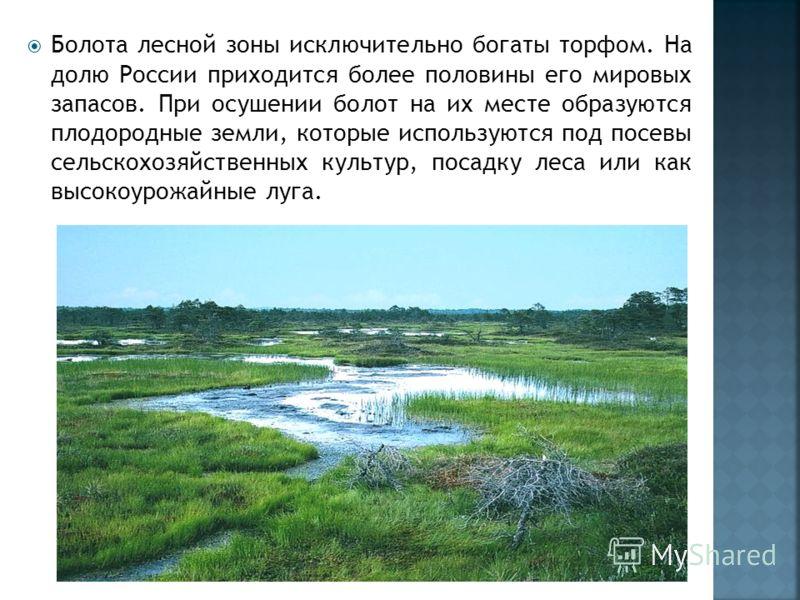 Болота лесной зоны исключительно богаты торфом. На долю России приходится более половины его мировых запасов. При осушении болот на их месте образуются плодородные земли, которые используются под посевы сельскохозяйственных культур, посадку леса или