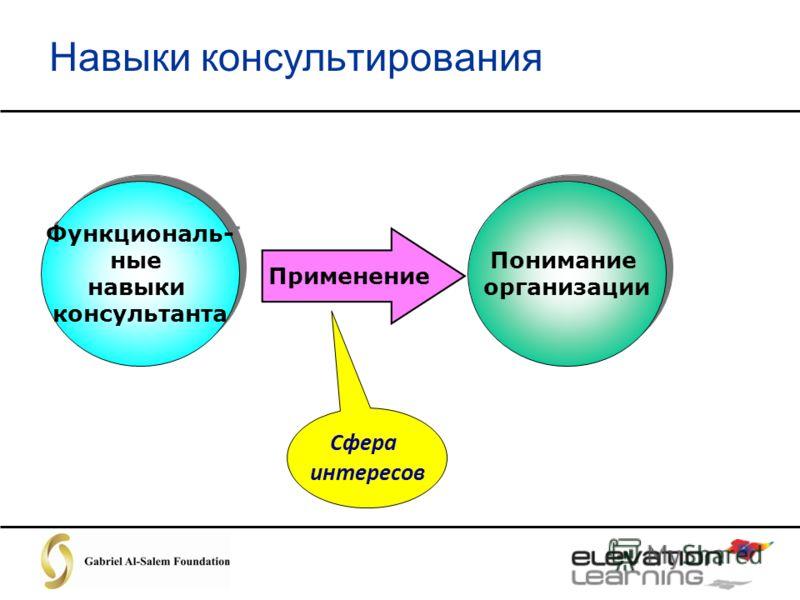 Навыки консультирования Функциональ- ные навыки консультанта Функциональ- ные навыки консультанта Применение Понимание организации Понимание организации Сфера интересов
