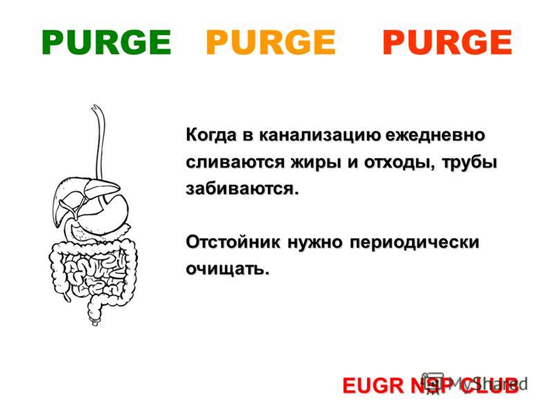 Когда в канализацию ежедневно сливаются жиры и отходы, трубы забиваются. Отстойник нужно периодически очищать. EUGR NSP CLUB PURGE PURGE PURGE