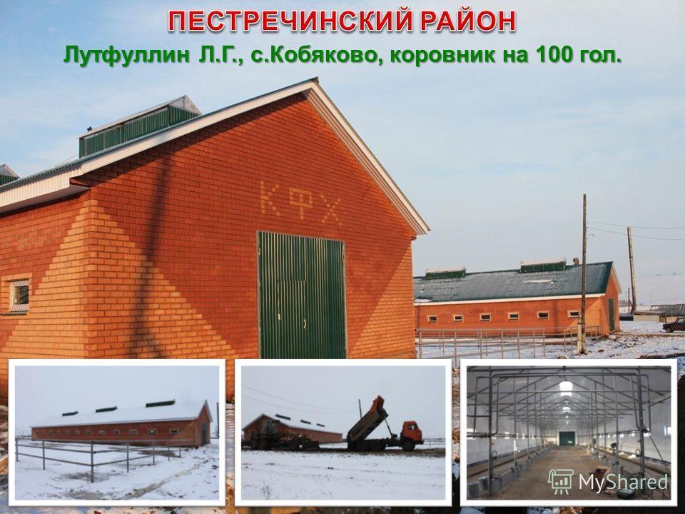 Лутфуллин Л.Г., с.Кобяково, коровник на 100 гол.
