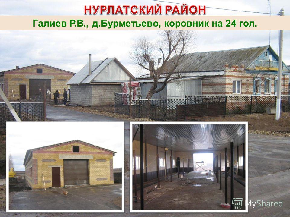 Галиев Р.В., д.Бурметьево, коровник на 24 гол.