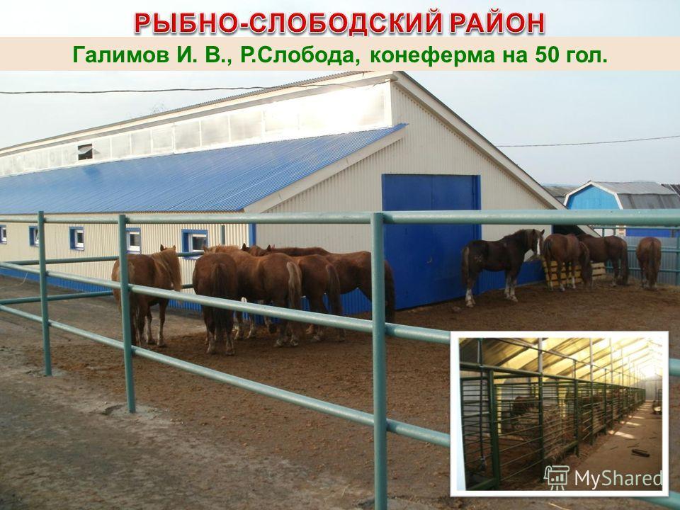 Галимов И. В., Р.Слобода, конеферма на 50 гол.