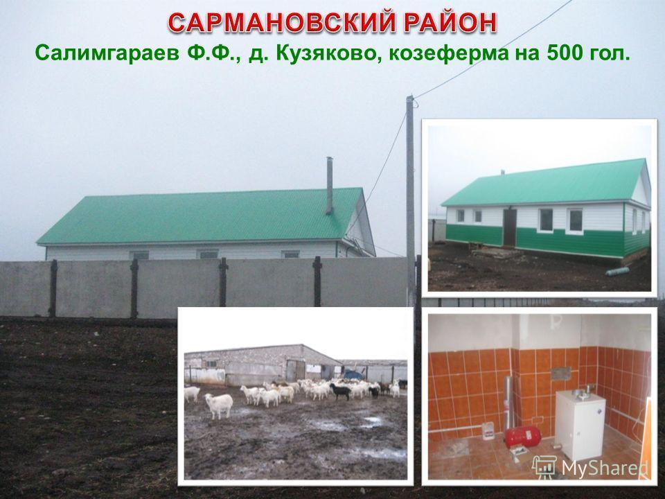 Салимгараев Ф.Ф., д. Кузяково, козеферма на 500 гол.