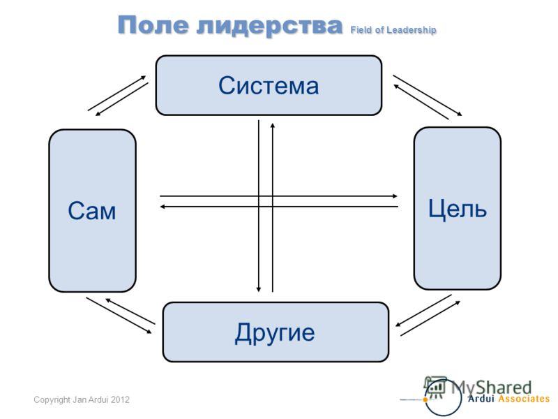 Copyright Jan Ardui 2012 Система Другие Сам Цель Поле лидерства Field of Leadership
