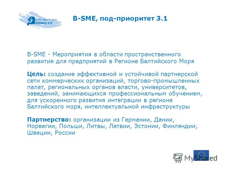 B-SME, под-приоритет 3.1 B-SME - Мероприятия в области пространственного развития для предприятий в Регионе Балтийского Моря Цель: создание эффективной и устойчивой партнерской сети коммерческих организаций, торгово-промышленных палат, региональных о