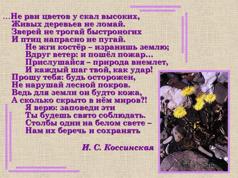… Не рви цветов у скал высоких, Живых деревьев не ломай. Зверей не трогай быстроногих И птиц напрасно не пугай. Не жги костёр – изранишь землю; Вдруг ветер: и пошёл пожар… Прислушайся – природа внемлет, И каждый шаг твой, как удар! Прошу тебя: будь о