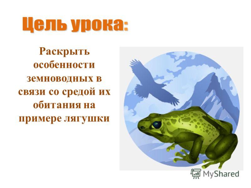 Раскрыть особенности земноводных в связи со средой их обитания на примере лягушки