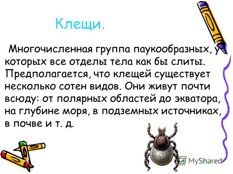 Клещи. Многочисленная группа паукообразных, у которых все отделы тела как бы слиты. Предполагается, что клещей существует несколько сотен видов. Они живут почти всюду: от полярных областей до экватора, на глубине моря, в подземных источниках, в почве