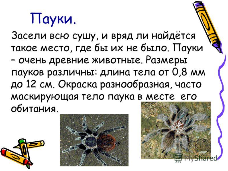 Пауки. Засели всю сушу, и вряд ли найдётся такое место, где бы их не было. Пауки – очень древние животные. Размеры пауков различны: длина тела от 0,8 мм до 12 см. Окраска разнообразная, часто маскирующая тело паука в месте его обитания.
