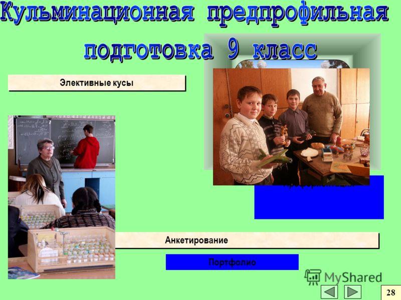 Анкетирование Элективные кусы Портфолио Профориентация 28