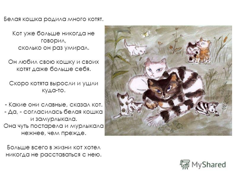 Белая кошка родила много котят. Кот уже больше никогда не говорил, сколько он раз умирал. Он любил свою кошку и своих котят даже больше себя. Скоро котята выросли и ушли куда-то. - Какие они славные, сказал кот. - Да, - согласилась белая кошка и заму