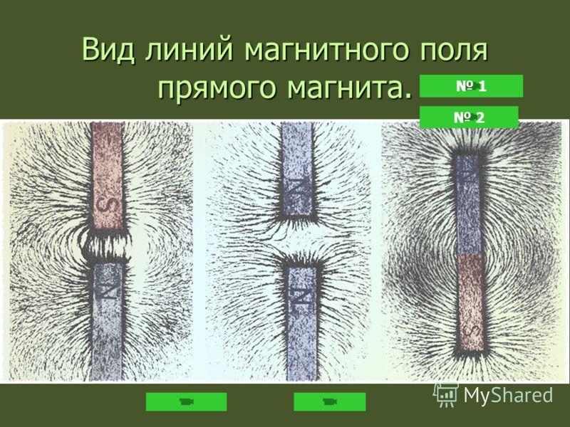 Вид линий магнитного поля прямого магнита. 1 2
