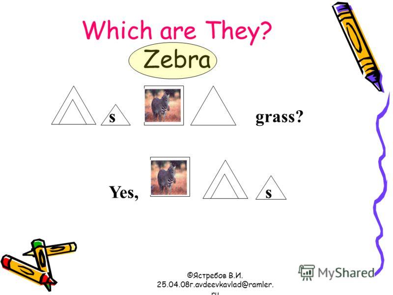 ©Ястребов В.И. 25.04.08г.avdeevkavlad@ramler. ru Which are They? Zebra s grass? Yes, s