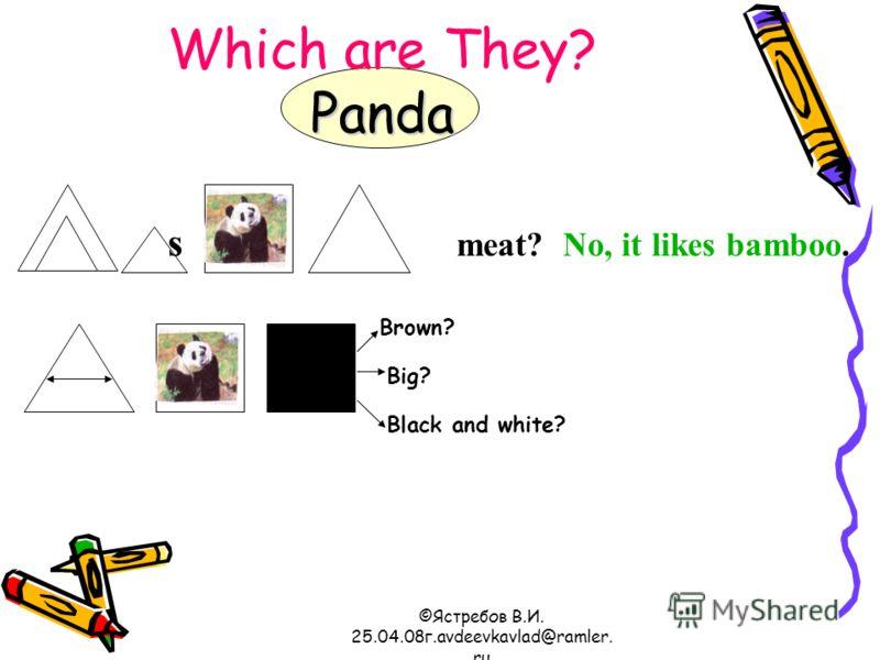 ©Ястребов В.И. 25.04.08г.avdeevkavlad@ramler. ru Panda Which are They? Panda s meat? No, it likes bamboo. Brown? Big? Black and white?