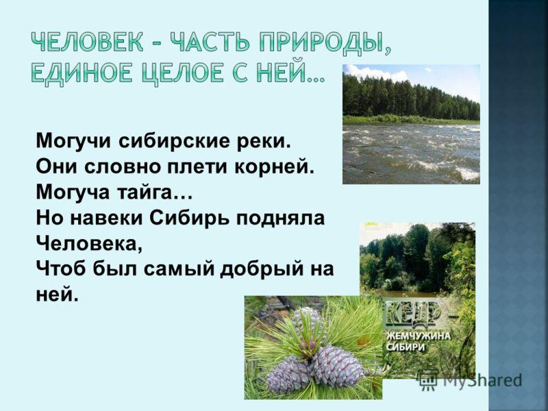 Могучи сибирские реки. Они словно плети корней. Могуча тайга… Но навеки Сибирь подняла Человека, Чтоб был самый добрый на ней.