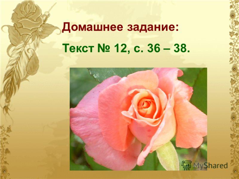 Домашнее задание: Текст 12, с. 36 – 38.