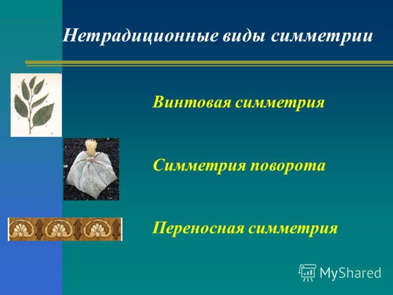 Нетрадиционные виды симметрии Винтовая симметрия Симметрия поворота Переносная симметрия