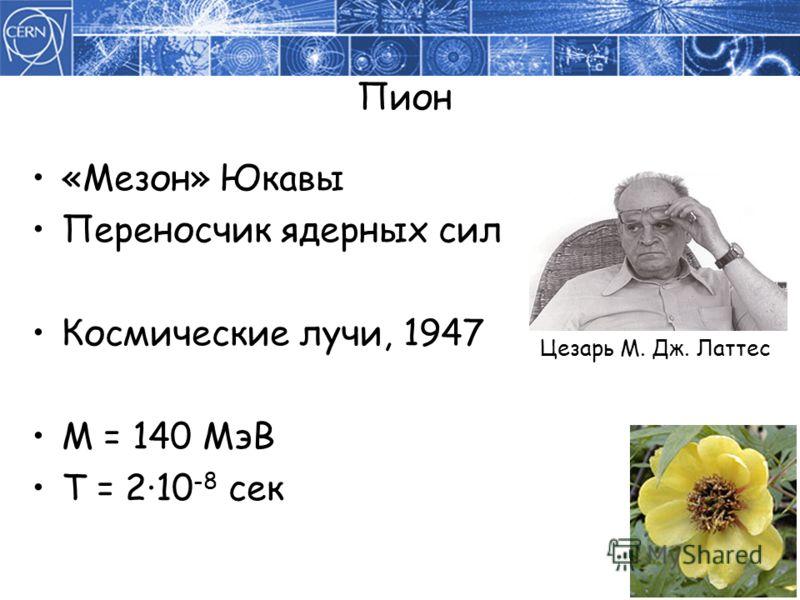 Пион «Мезон» Юкавы Переносчик ядерных сил Космические лучи, 1947 M = 140 МэВ T = 210 -8 сек Цезарь М. Дж. Латтес