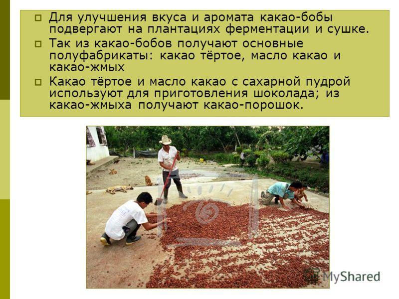 Для улучшения вкуса и аромата какао-бобы подвергают на плантациях ферментации и сушке. Так из какао-бобов получают основные полуфабрикаты: какао тёртое, масло какао и какао-жмых Какао тёртое и масло какао с сахарной пудрой используют для приготовлени