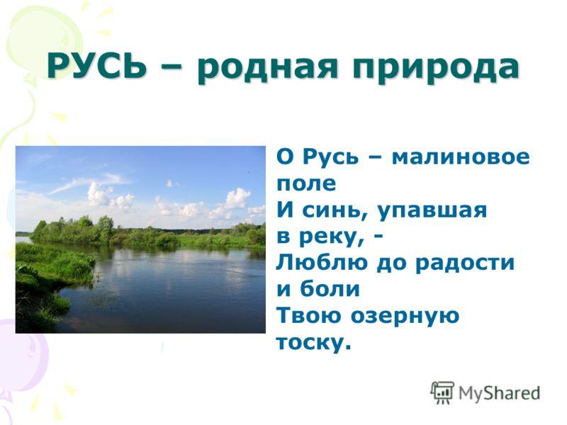 РУСЬ – родная природа О Русь – малиновое поле И синь, упавшая в реку, - Люблю до радости и боли Твою озерную тоску.