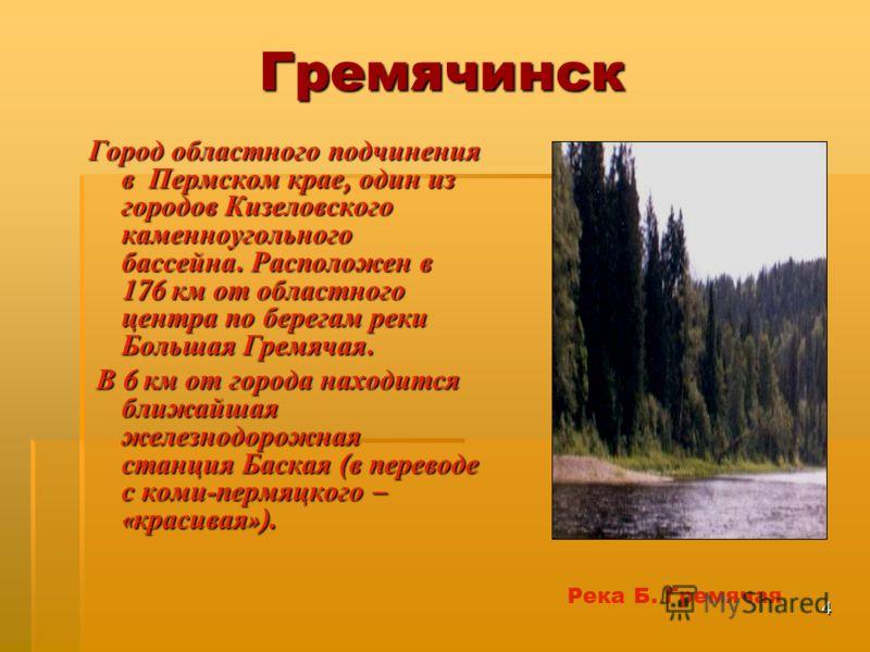 можно посадить город гремячинск пермского края материала Шерсть