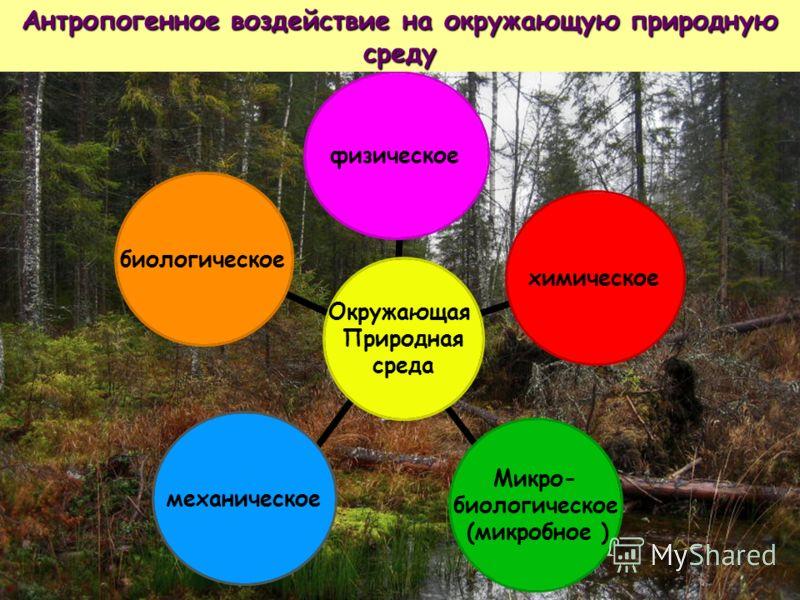 Окружающая Природная среда физическоехимическое Микро- биологическое (микробное ) механическоебиологическое Антропогенное воздействие на окружающую природную среду