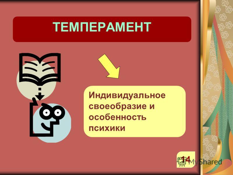 ТЕМПЕРАМЕНТ Индивидуальное своеобразие и особенность психики 14