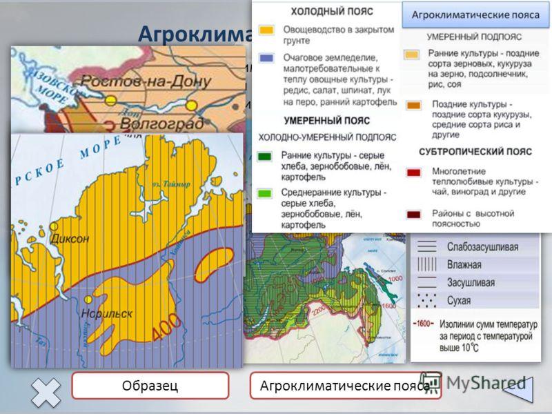 Агроклиматические пояса Агроклиматическая карта Карта показывает агроклиматические пояса, возможность ведения земледелия с учетом получаемого тепла, влаги и других природно-климатических условий. Обилие тепла, солнечного света, влаги в сочетании с пл