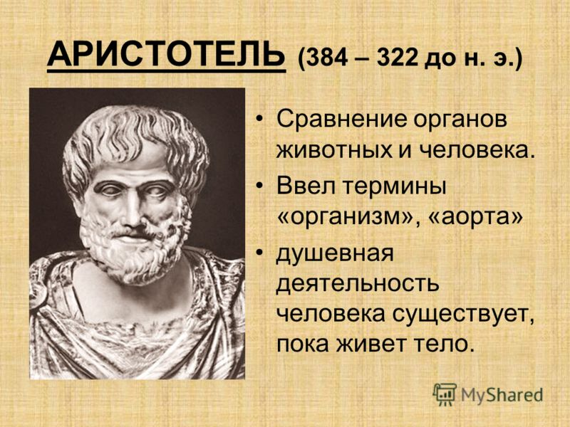 АРИСТОТЕЛЬ (384 – 322 до н. э.) Сравнение органов животных и человека. Ввел термины «организм», «аорта» душевная деятельность человека существует, пока живет тело.