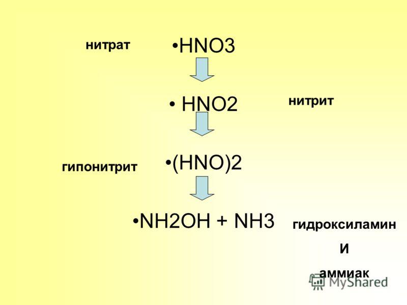 HNO3 HNO2 (HNO)2 NH2OH + NH3 нитрат нитрит гипонитрит гидроксиламин И аммиак