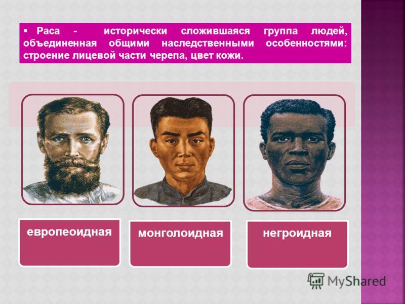 европеоидная монголоидная негроидная Раса - исторически сложившаяся группа людей, объединенная общими наследственными особенностями: строение лицевой части черепа, цвет кожи.
