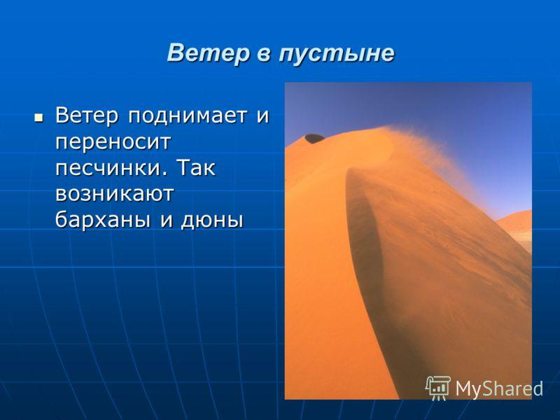 Ветер в пустыне Ветер поднимает и переносит песчинки. Так возникают барханы и дюны Ветер поднимает и переносит песчинки. Так возникают барханы и дюны