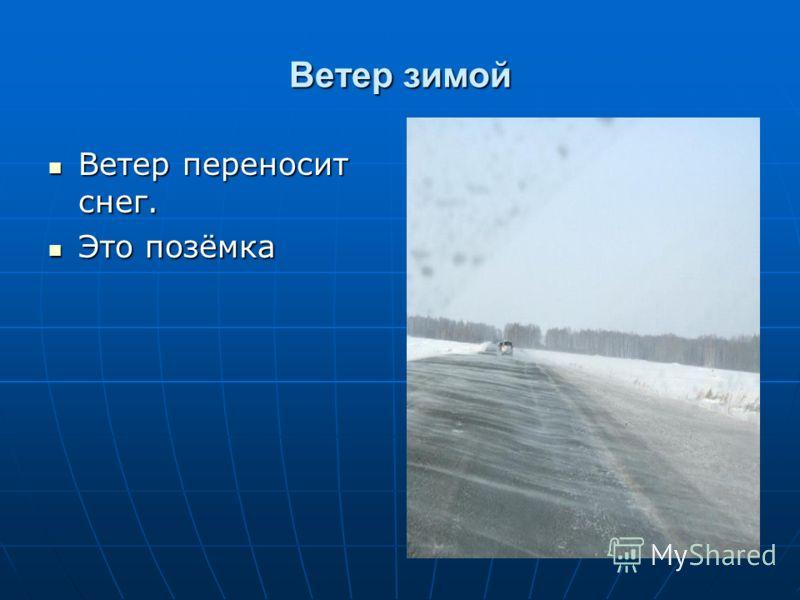 Ветер зимой Ветер переносит снег. Ветер переносит снег. Это позёмка Это позёмка