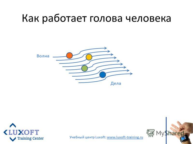 Как работает голова человека Учебный центр Luxoft: www.luxoft-training.ru Волна Дела
