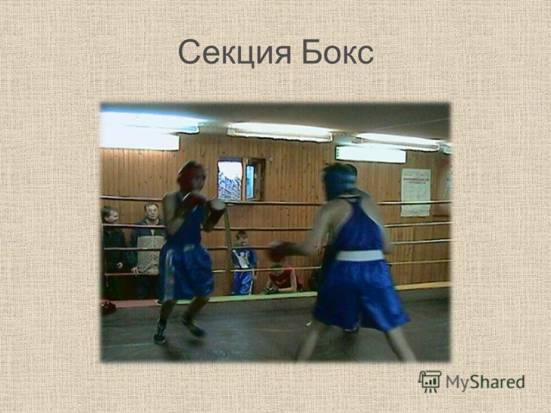 Секция Бокс