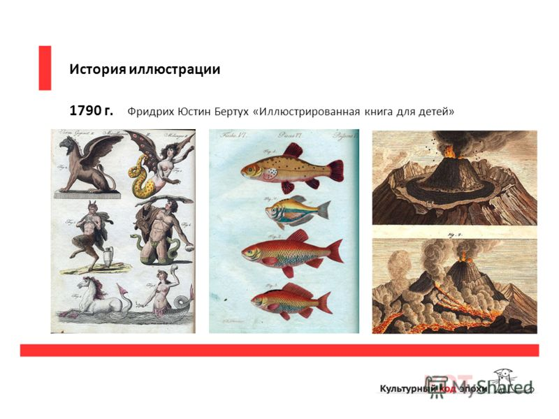 История иллюстрации 1790 г. Фридрих Юстин Бертух «Иллюстрированная книга для детей»