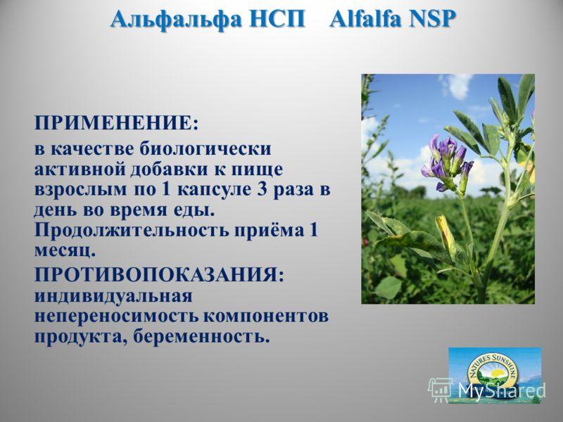 Альфальфа НСП Alfalfa NSP ПРИМЕНЕНИЕ: в качестве биологически активной добавки к пище взрослым по 1 капсуле 3 раза в день во время еды. Продолжительность приёма 1 месяц. ПРОТИВОПОКАЗАНИЯ: индивидуальная непереносимость компонентов продукта, беременно