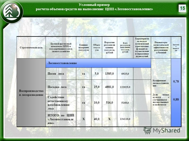 15 Условный пример расчета объемов средств на выполнение ЦПП «Лесовосстановление» Стратегическая цель Целевой прогнозный показатель (ЦПП) и государственная услуга лесного хозяйства Единица измерения госуслуги Объем госусл уги Норматив расходов на еди