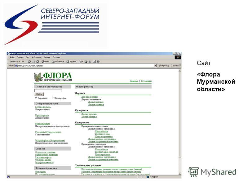 Сайт «Флора Мурманской области»