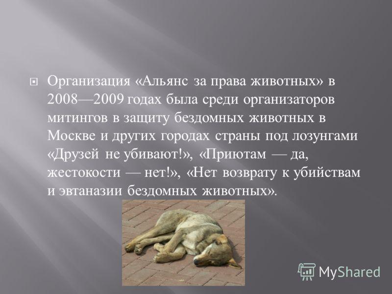 В марте 2009 года в России прошла Общероссийской акции против убийств и негуманного отношения к бездомным животным. Основными требованиями митингующих были принятие закона, защищающего животных от жестокого обращения., а также принятие федеральной пр